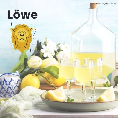 Limoncello für Löwen ©Shutterstock_Life morning