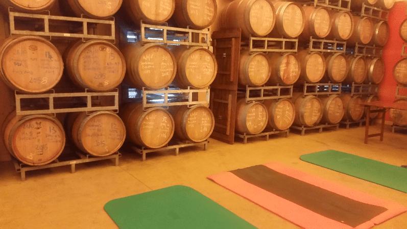 Bewegung im Weinkeller