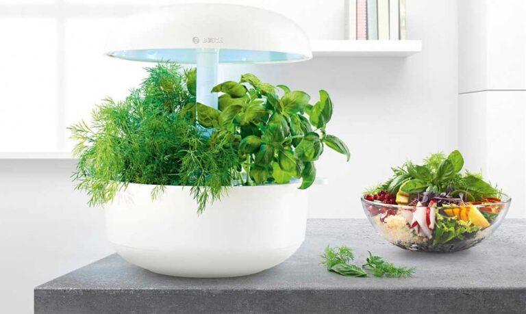 Bosch SmartGrow - der Mini-Indoor-Garten im Test