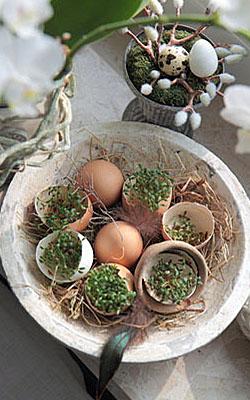 Deko-Idee für Ostern: Kresse-Eier; Bildquelle: © Anja Löschner - Fotolia.com