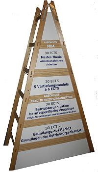 Klicken Sie hier, um das große Bild anzusehen: Die Module des Fernstudiums auf der Bildungsleiter; Bildquelle: Fachakademie Aditus