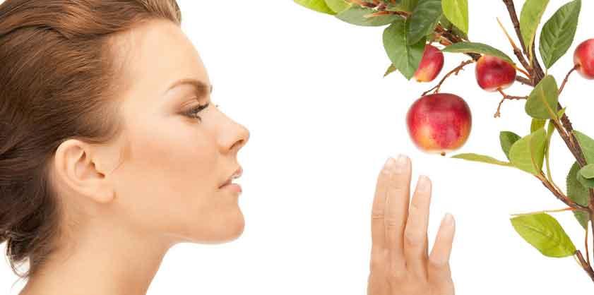 Nahrungsmittel mit Anti Aging Effekt