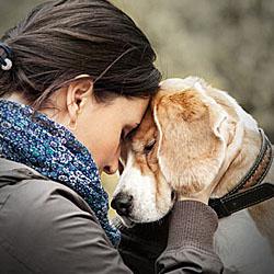 Hunde sind zwar kein Partnerersatz, aber sie können zu guten Freunden werden; Bildquelle: Soloviova Liudmyla - Fotolia.com