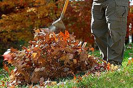 So bereiten Sie den Garten auf den Winter vor; Bildquelle: istockphoto, groveb