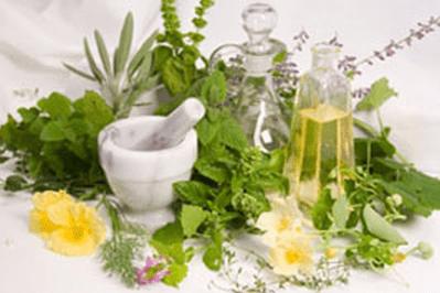Heilung mit Pflanzen