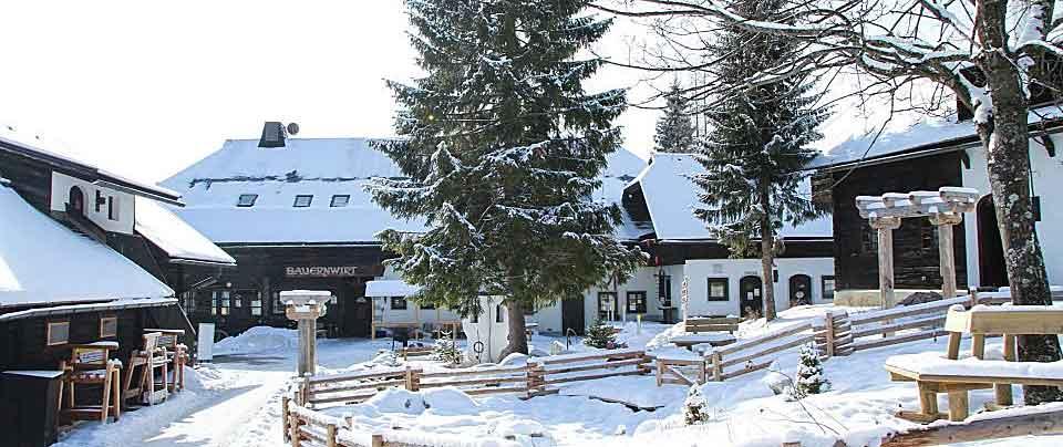Almdörfer Kirchleitn im Winter