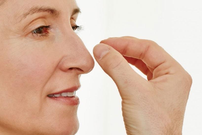 Form und Funktion der Nase gehen stets Hand in Hand