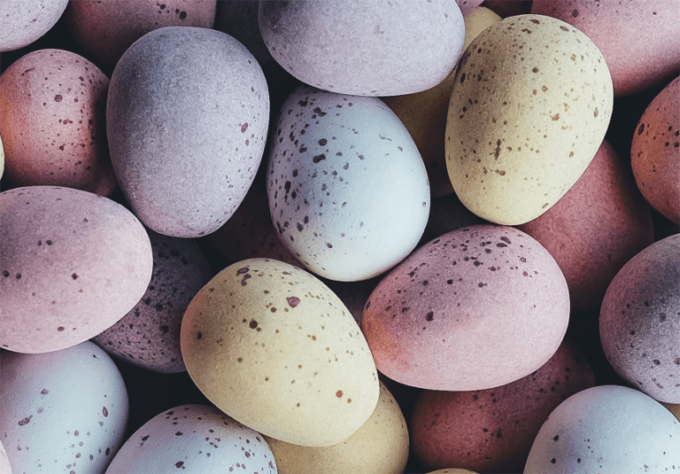 Osterzeit ist Eierzeit - Das solltest du über Eier wissen