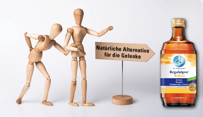 regulat pro arthro web
