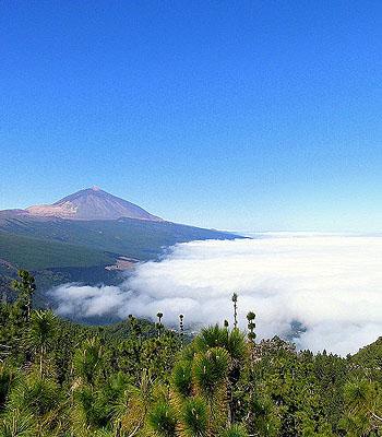 Blick vom Teide in Teneriffa