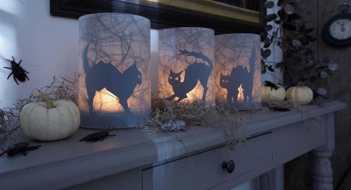 Schaurig-schöne Katzen-Windlichter