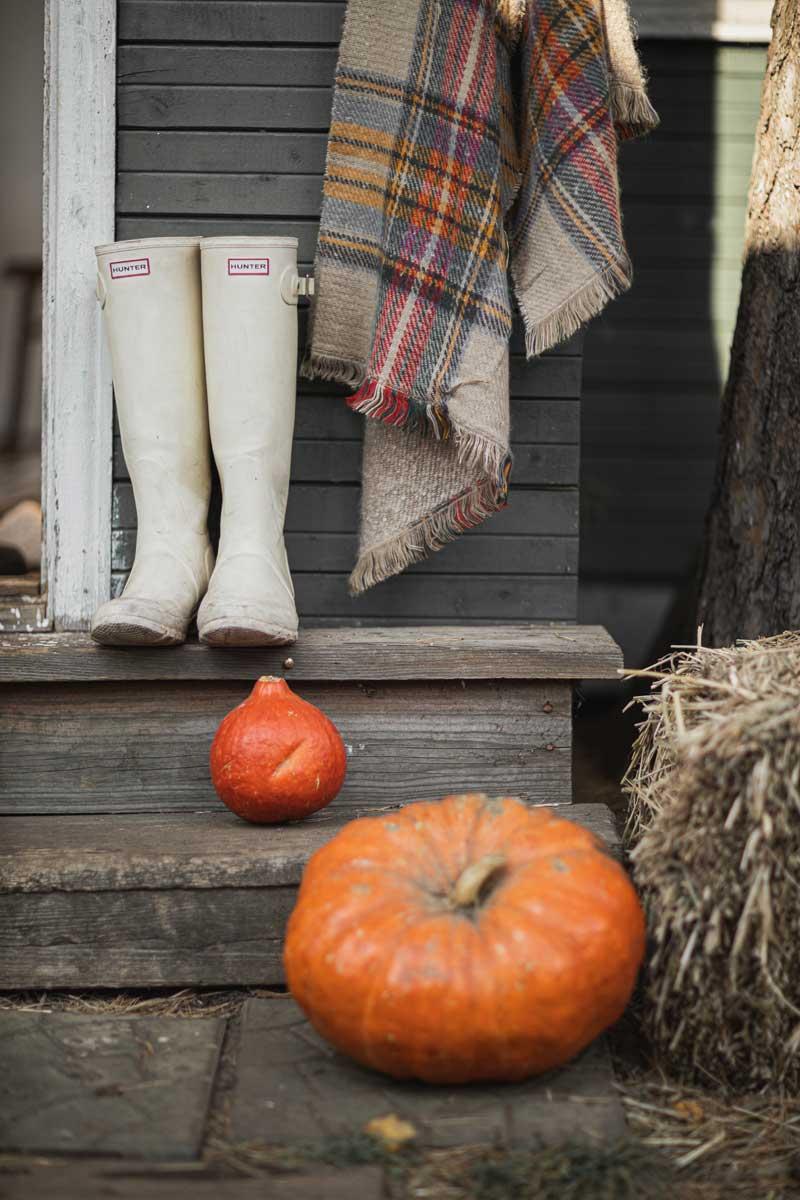 Der Pumpkin Spice Latte gehört zur Kürbiszeit dazu